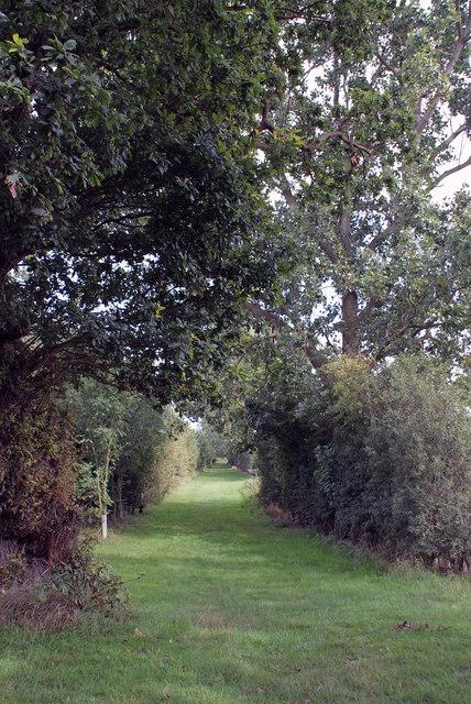 Bridleway near Bucklesham quarry