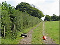 ST5454 : Track along the edge of a field in the Mendips by Sarah Charlesworth