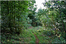 SK7628 : Public footpath by Kate Jewell