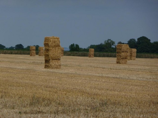 Stacked straw bales