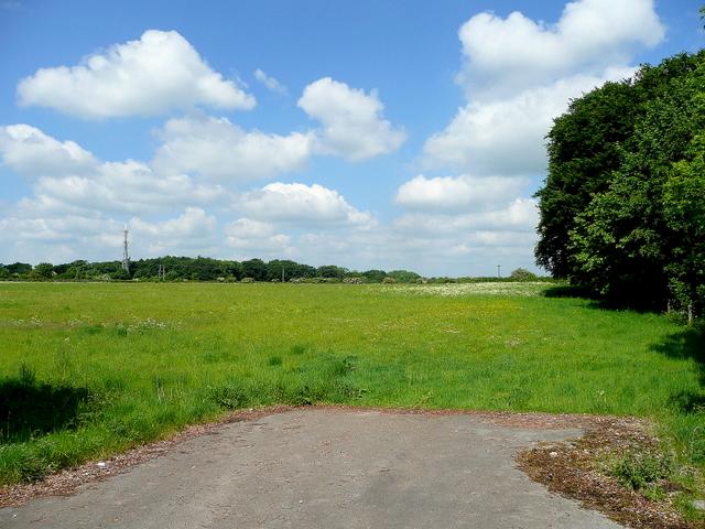 Pasture north of Ermin Way