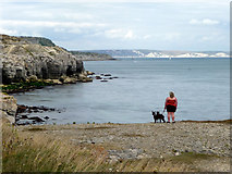 SY6869 : Cliff top, Portland, Dorset by Christine Matthews