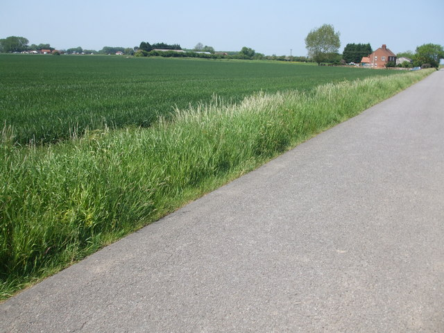 Fields towards Ruston's farm