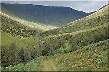 NT1512 : Carrifran Glen and Raven Crag by Jim Barton