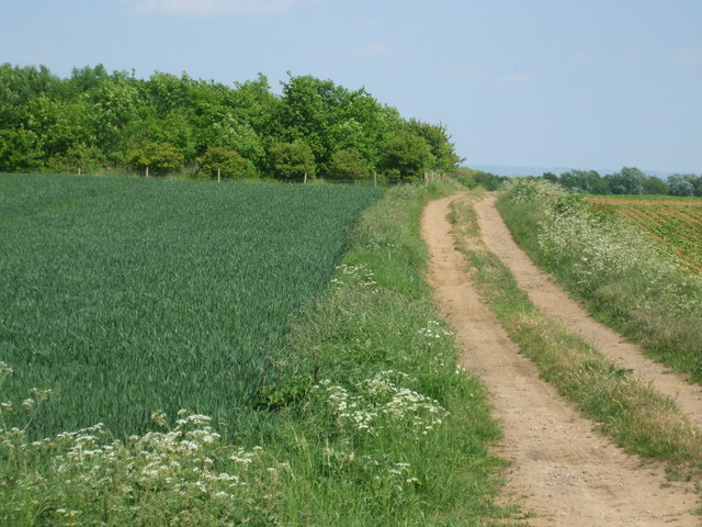 Farm Track off Middle Street, Hemswell Cliff