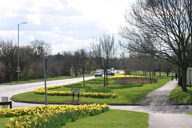 Marlborough Way  (17)