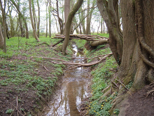 Stream through Crow Green