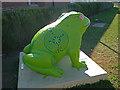 TA1034 : Larkin toad, Hull, (33) by Paul Harrop