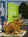 TA1028 : Larkin toad, Hull (35) by Paul Harrop