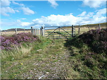 NH5639 : Track crossing Moorland to Doire Mhòr by Sarah McGuire