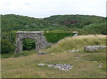SS8872 : The ruins of Dunraven Castle by Eirian Evans