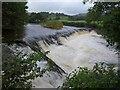 SD4798 : Barley Bridge Weir by Derek Harper