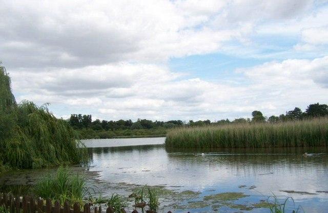Old Alresford Pond