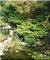 SW8766 : The Japanese Garden - St. Mawgan by Anthony Parkes