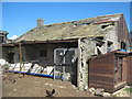 NZ0625 : Derelict farmhouse at Foster Hill Woodland by peter robinson