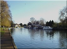 TG2608 : New Cut of the River Yare by Adrian S Pye