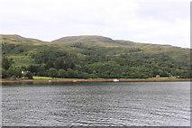 NM6356 : Shoreline near Rahoy, Loch Teacuis by Michael Jagger