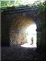 NY7909 : Old railway bridge by Karl and Ali