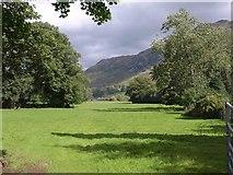 NY3916 : Meadow near Grisedale Bridge by Derek Harper