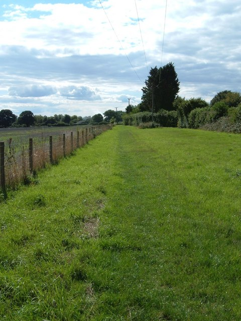 Along the Monarch's Way