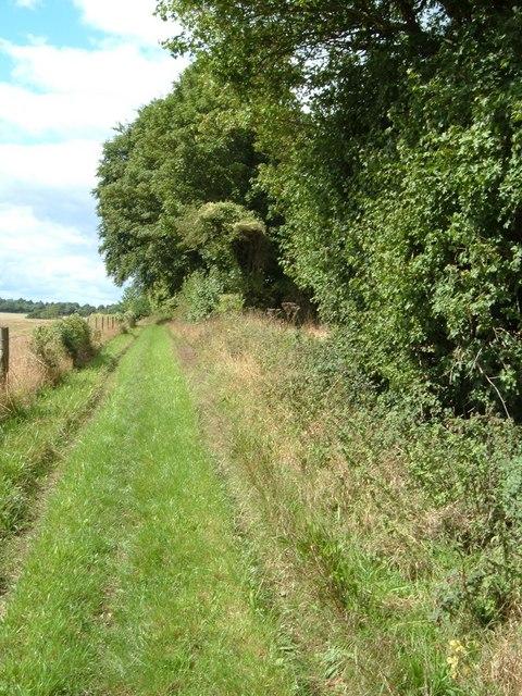 Bridleway at Chidden