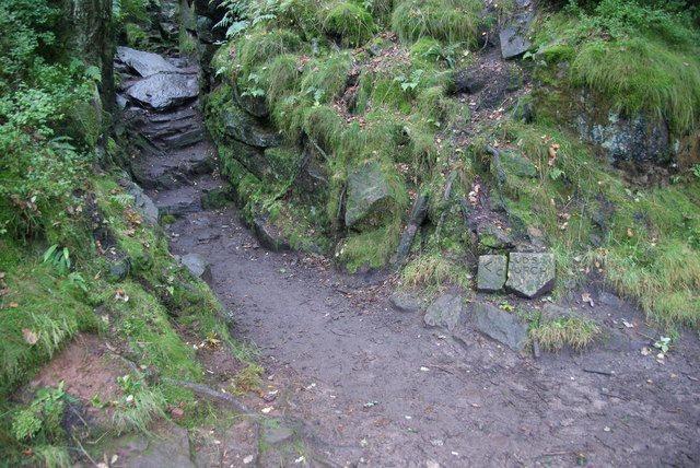The way into Lud's Church