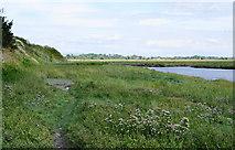 SD3727 : Path by Wrea Brook by Bill Boaden