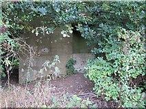 SU5985 : Behind the fence by Bill Nicholls
