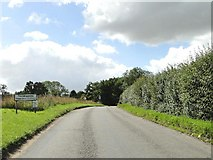 TM1469 : Road into Thorndon, Suffolk by Adrian S Pye