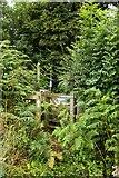 SU7995 : Kissing gate on the footpath by Steve Daniels