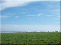 SH2428 : Farmland between Lon Rhiw lane and the sea at Hell's Mouth by Eric Jones