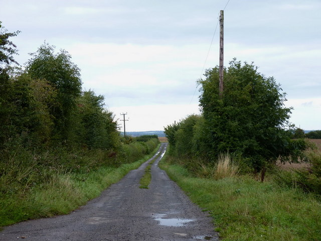 Caughley Road near Inett