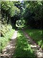 SN0935 : Lane to Penparke by ceridwen