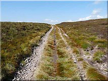 NT8514 : Bridleway near the summit of Windy Gyle by Oliver Dixon