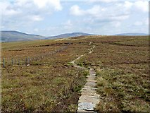 NT8515 : Pennine Way east of Windy Gyle by Oliver Dixon