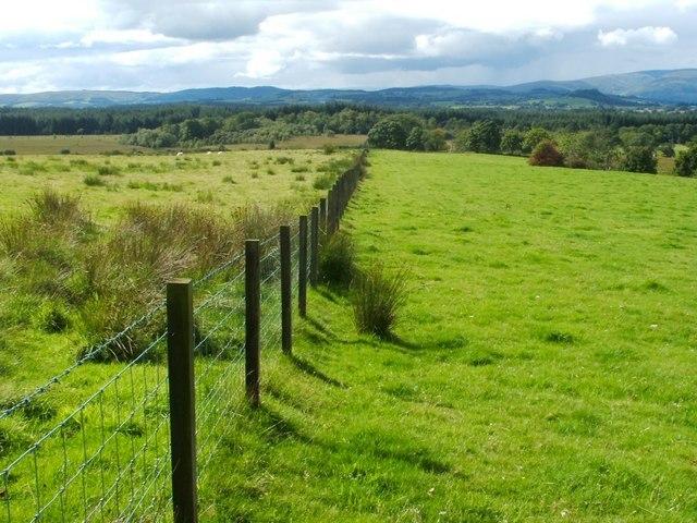 Fence near Aucheneck trig point