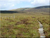 NT8817 : Pennine Way at King's Seat by Oliver Dixon