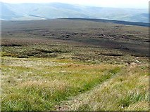 NT8819 : Pennine Way on the slopes of Cairn Hill by Oliver Dixon