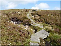 NT8919 : Pennine Way on the slopes of Cairn Hill by Oliver Dixon