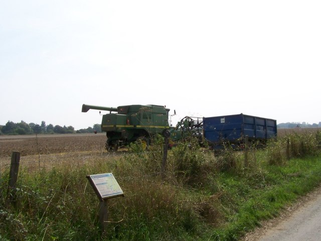 Harvesting in a field near to Dell Quay