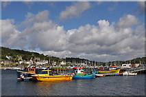 NR8668 : Tarbert harbour by Nick Mutton