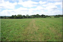 TQ5056 : Darent Valley Path crosses a field by N Chadwick
