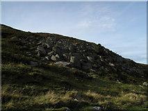 NY3715 : Boulders on slope above Grisedale by Trevor Littlewood
