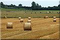 SJ6627 : Mixed farming by Row17