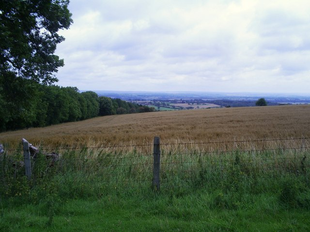 View across corn fields to the Vale of Pickering