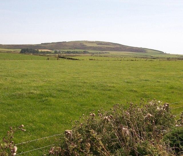 Sown grassland on farmland between the coastal path and Mynydd Cefnamwlch