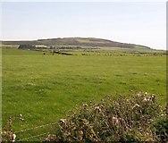 SH2035 : Sown grassland on farmland between the coastal path and Mynydd Cefnamwlch by Eric Jones