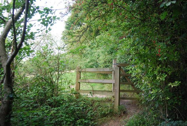 Kissing gate, North Downs Way, Star Hill