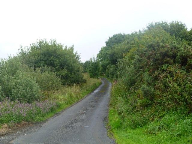 Country Lane near Drummin