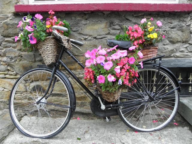 Old bike, Ramelton